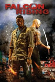 Falcon Rising 2014 Stream Film Deutsch