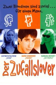 Der Zufallslover 1996 Stream Film Deutsch