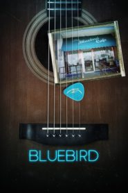 Bluebird 2019 Stream Film Deutsch