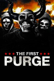 The First Purge 2018 Stream Film Deutsch