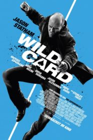 Wild Card 2015 Stream Film Deutsch