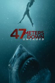 47 Meters Down: Uncaged 2019 Stream Film Deutsch
