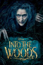 Into the Woods 2014 Stream Film Deutsch