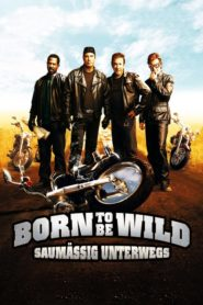 Born to be Wild – Saumäßig unterwegs 2007 Stream Film Deutsch