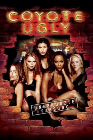 Coyote Ugly 2000 Stream Film Deutsch