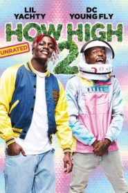 How High 2 2019 Stream Film Deutsch