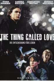 The Thing called Love – Die Entscheidung fürs Leben 1993 Stream Film Deutsch