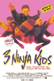 3 Ninja Kids 1992 Stream Film Deutsch
