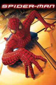 Spider-Man 2002 Stream Film Deutsch