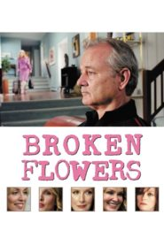 Broken Flowers 2005 Stream Film Deutsch