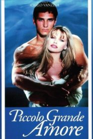 Piccolo grande amore 1993 Stream Film Deutsch