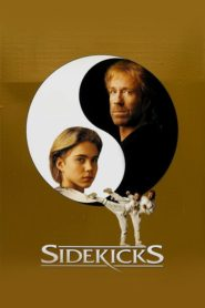 Sidekicks 1992 Stream Film Deutsch