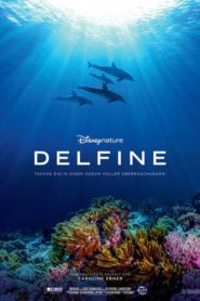 Dolphin Reef 2020 Stream Film Deutsch