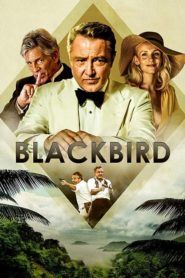 Blackbird 2020 Stream Film Deutsch