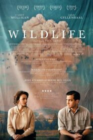Wildlife 2018 Stream Film Deutsch